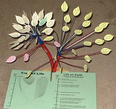Modelo en 3D del Árbol de la Vida
