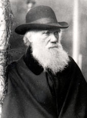 Charles Darwin at age 72 on the veranda at Down